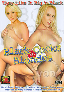 Black Cocks In Blondes Box Cover