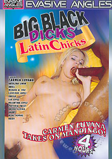 Big Black Dicks Latin Chicks Box Cover