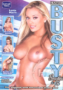 Busty Beauties #15 Box Cover