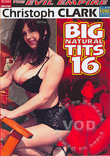 Big Natural Tits 16 Box Cover