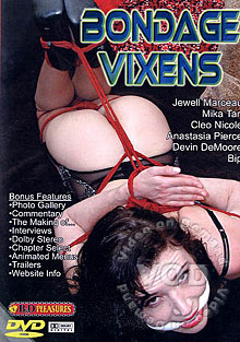 Bondage Vixens Box Cover