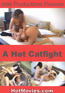A Hot Catfight Box Cover