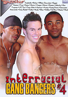 Interracial Gang Bangers #4 Box Cover