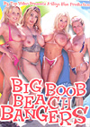 Video: Big Boob Beach Bangers
